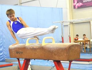 Спортивная гимнастика - Чемпионат и первенство СФО