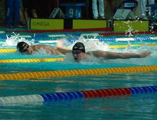 Итоги чемпионата России по плаванию