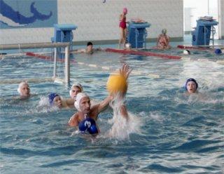 Новосибирская команда выступит в чемпионате России по мини водному поло