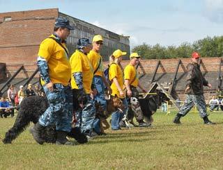 Фестиваль собак подводит итоги