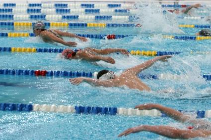 Новосибирские пловцы отобрались на чемпионаты Европы и мира