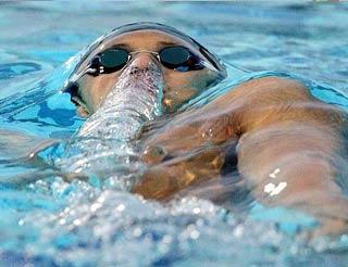 Новосибирцы выступят в VI этапе Кубка мира FINA/ARENA по плаванию