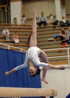 Новосибирская гимнастрада соберет более 700 участников