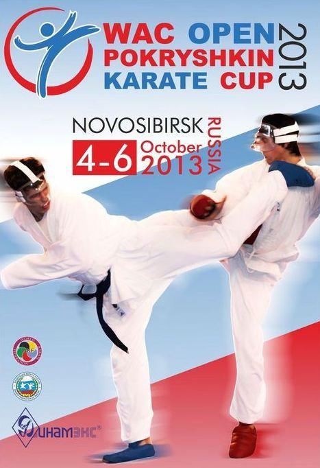 Результаты Международного турнира по каратэ «Кубок маршала Покрышкина»