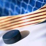 Итоги выступления хоккеистов НЦВСМ на чемпионате мира.