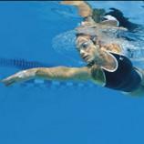 За Уралом по-прежнему нет равных новосибирским пловцам!