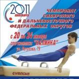 Новосибирск примет чемпионаты Сибирского и Дальневосточного округов по спортивной гимнастике