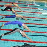 Лучшие пловцы-подводники сезона 2012 определились на египетском этапе кубка мира