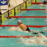 Три медали с Кубка России привезли Новосибирские пловцы