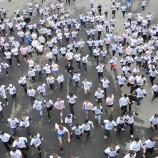 Тысячи новосибирцев приняли участие в Кроссе Нации - 2014