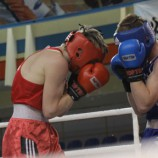 В Новосибирске пройдет мастерский турнир по боксу памяти Дмитрия Панова