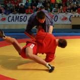 В Новосибирске состоится турнир юных самбистов в память о воине-спортсмене