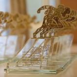 Новосибирский Центр Высшего Спортивного Мастерства стал лауреатом национальной номинации в области физической культуры и спорта Министерства спорта Российской Федерации.