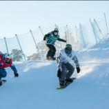 День снега в Новосибирске отметили почти 800 человек