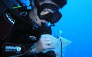 Чемпионат и Кубок России по подводному ориентированию