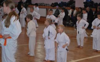 Новосибирские каратисты повышают квалификацию в НЦВСМ