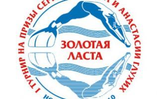 Новосибирск ВПЕРВЫЕ примет турнир по плаванию в ластах!