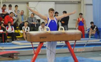 Уровень проведения соревнования задает темп развития самой гимнастики