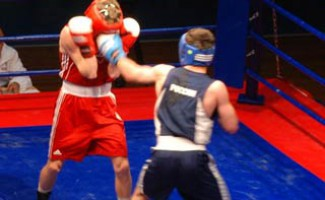 Победные старты новосибирских боксеров