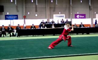 Новосибирский ушуист привез 3 золотые медали с Первенства Европы