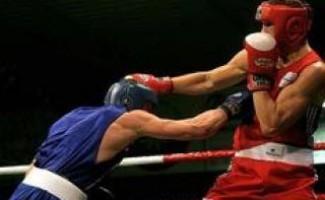 Сотни боксеров съедутся в Новосибирск побороться за титул чемпиона России