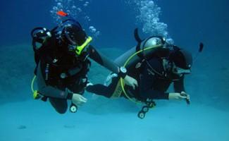 23 медали новосибирских подводников на Кубке России
