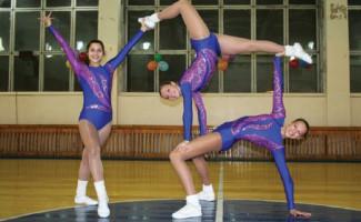 Новосибирцы стали победителями и призерами Кубка России по спортивной аэробике