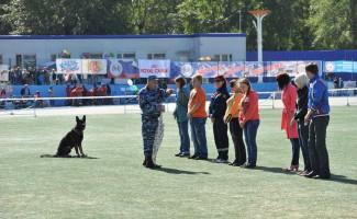 «МОЙ НОВЫЙ МИР» - кинологический праздник и всероссийские соревнования по спортивно-прикладному собаководству