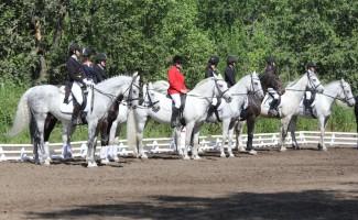 I этап ХI Интеграционных конных игр