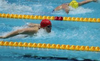 Пловцы вступили в борьбу за путевки на Олимпийские Игры 2016