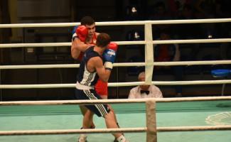 Новосибирские боксёры завоевали 11 медалей чемпионата Сибири